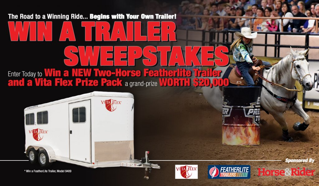 rv giveaway sweepstakes horse and rider attention horse lovers win this horse 5728