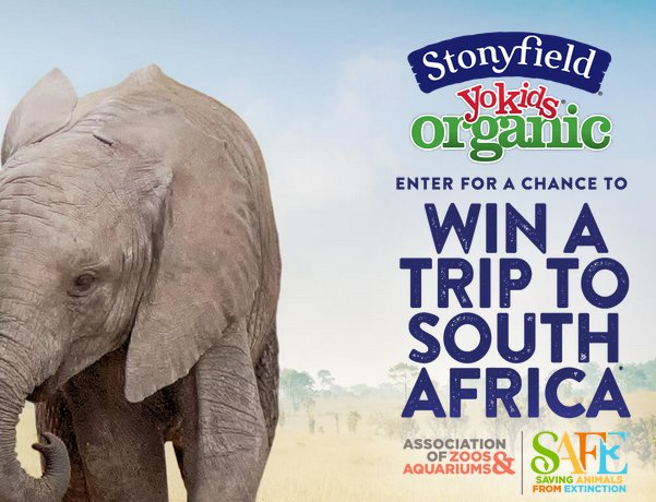 Africa sweepstakes